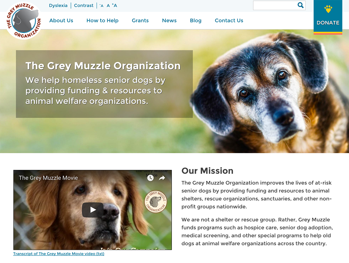 Grey Muzzle site showing default text