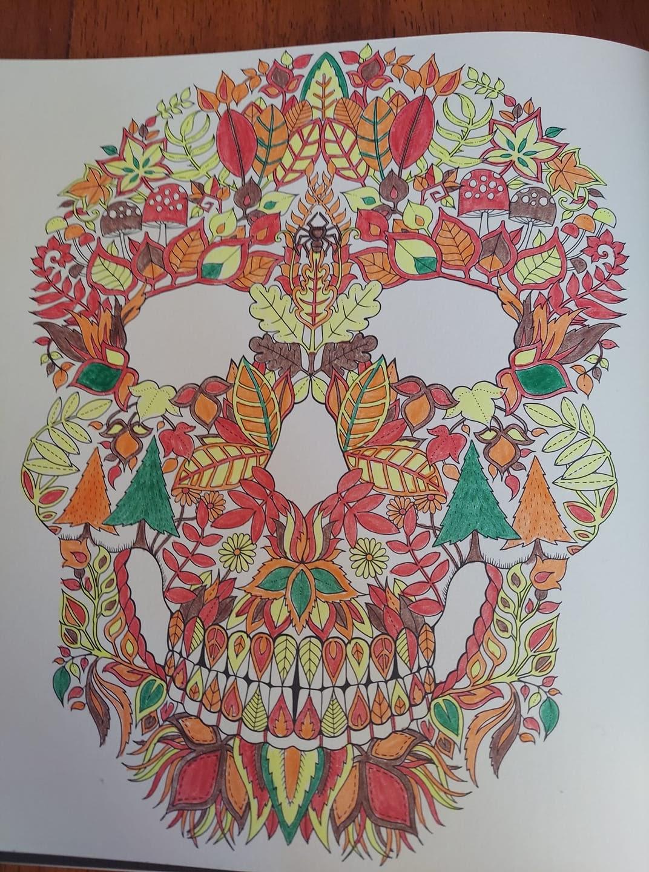 A colored page of sugar skull art by Johanna Basford