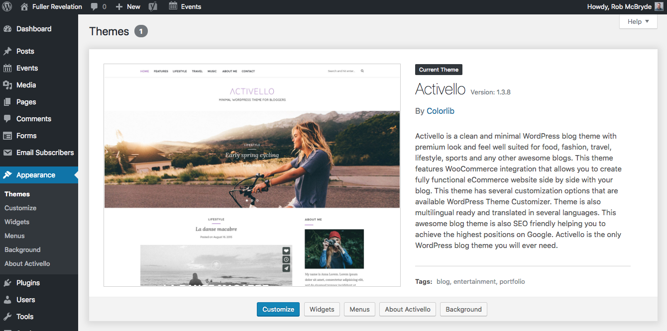 Screenshot of Wordpress themes and layout options