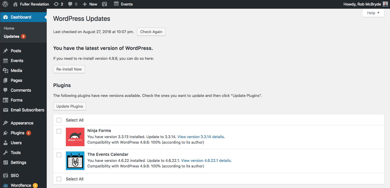 screenshot of Wordpress plugin updates